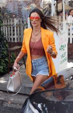 ALESSANDRA AMBROSIO Out for Lunch at The Ivy in Beverly Hills 06/18/2021