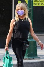 GOLDIE HAWN Out Shopping in New York 06/08/2021