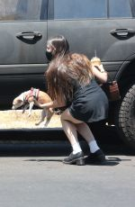 SCOUT WILLIS Out with Her Dog in West Hollywood 06/21/2021