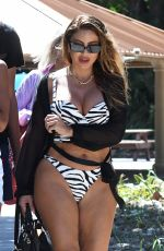 LARSA PIPPEN in Bikini at a Bach in Miami 07/20/2021