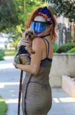 PHOEBE PRICE Out with Her Dog in Los Angeles 07/13/2021