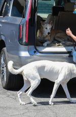 REGINA KING Arrives at Her Home in Los Feliz 07/05/2021