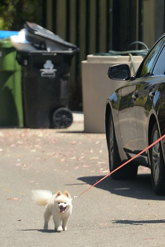 HEIDI MONTAG Out with Her Dog in Los Angeles 08/17/2021
