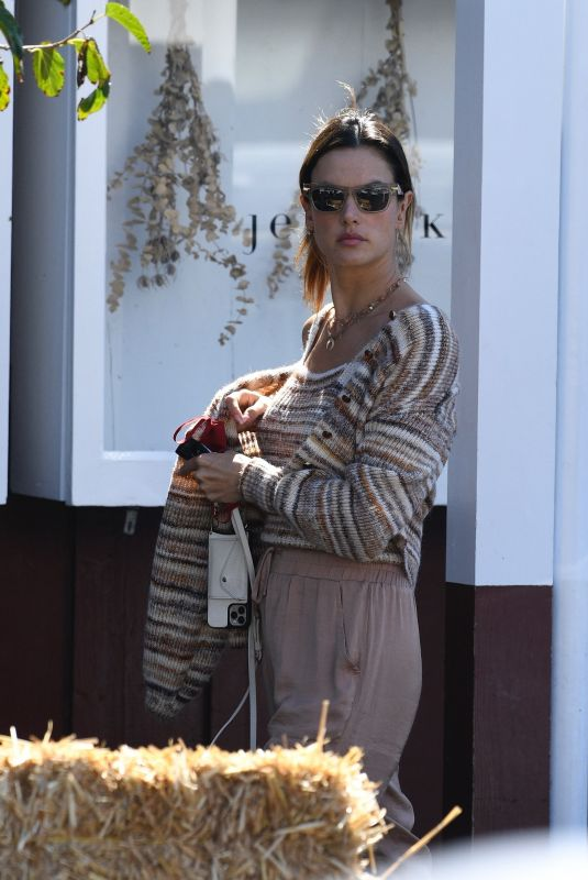 ALESSANDRA AMBROSIO Shopping for a Gift at Brentwood Country Mart 10/09/2021
